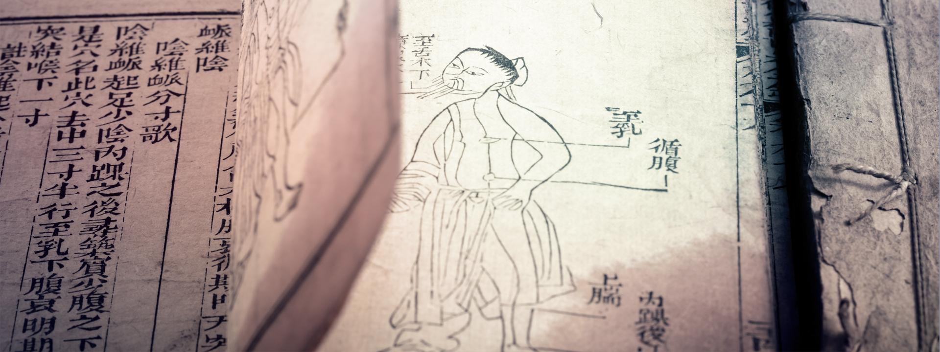 TCM Traditionelle Chinesische Medizin Lebensmagie